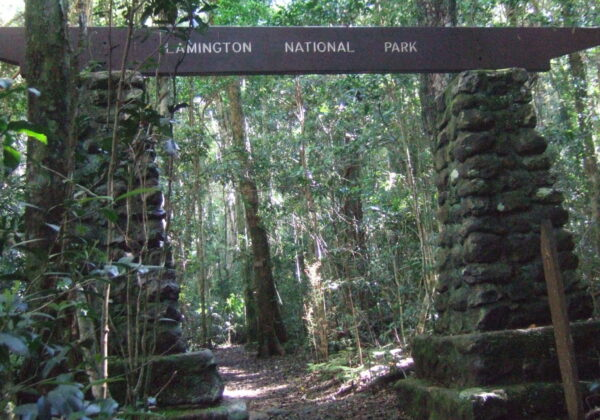 Lamington National Park