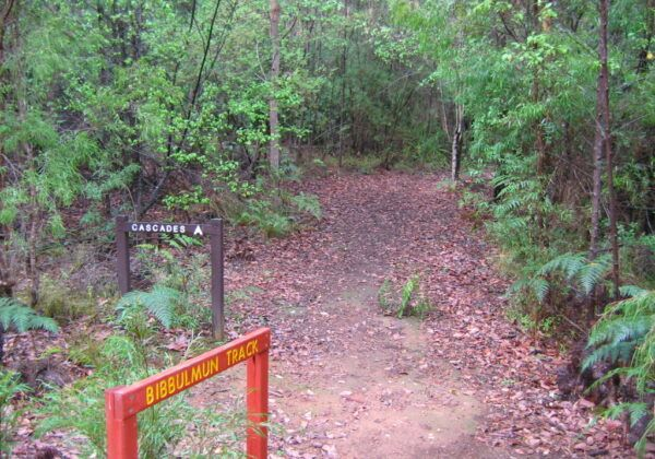 Bibbulmun Track Northern Terminus