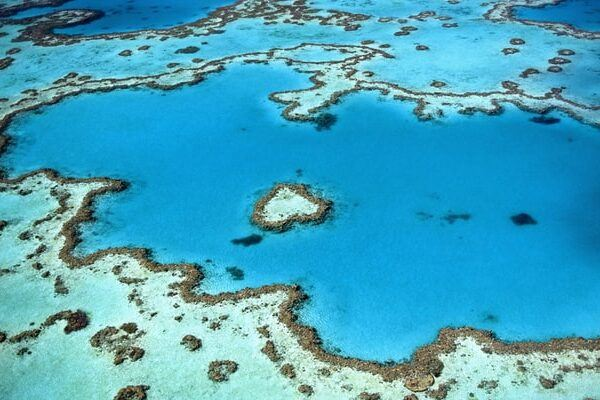 15 Magical Wonders of the Great Barrier Reef