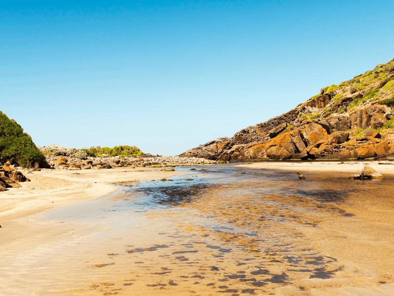 tempat wisata di australia selatan