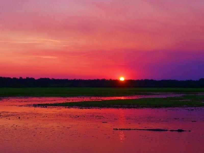 sunset at yellow river kakadu