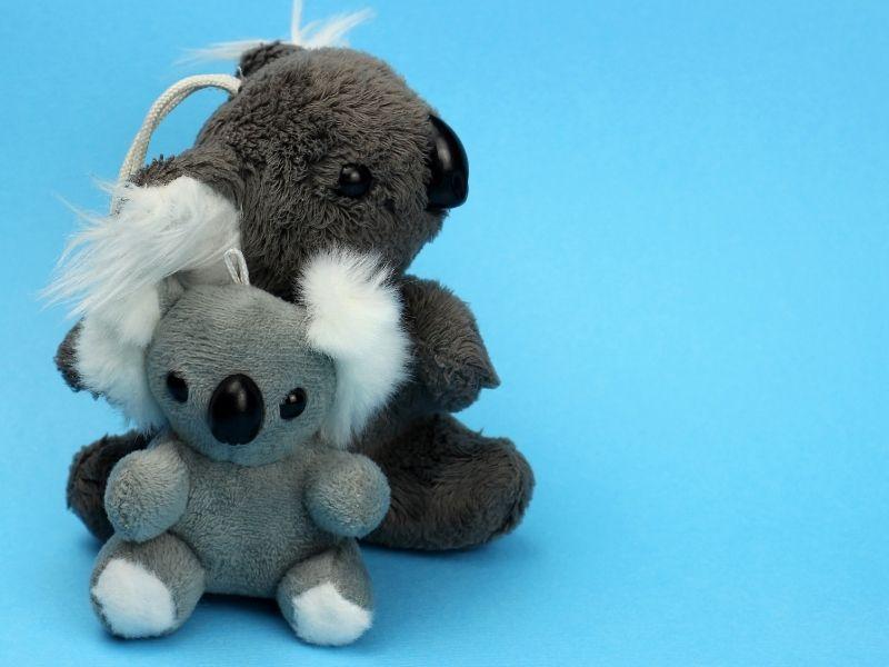 koala stuff animal