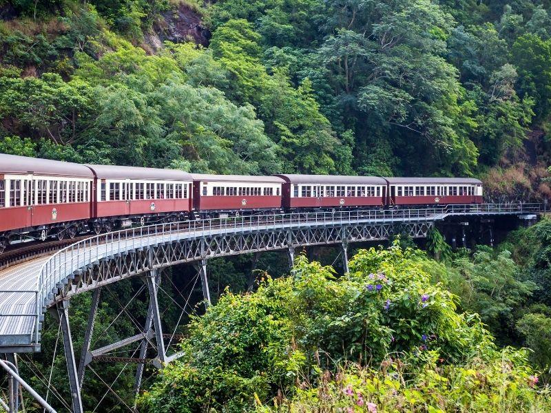 Wisata dan Belajar di Cairns